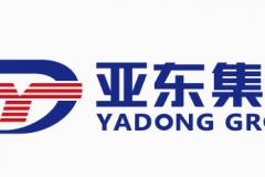 亚东集团在港交所正式挂牌上市,开盘破发跌近10%